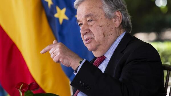 © Alejandro Martínez Vélez